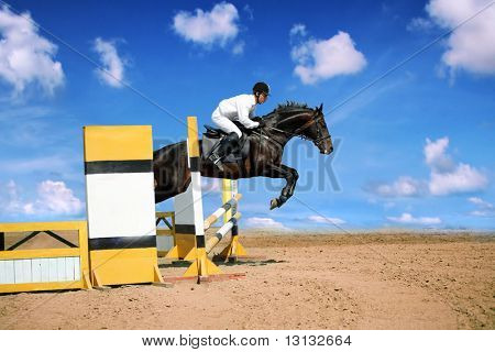 Horse theme: jockeys, horse races, speed. poster