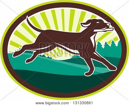 Illustration of an english pointer dog running fetching stick viewed from the side with field trees and sunburst in the background set inside oval shape done in retro style.