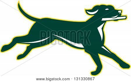Illustration of an english pointer dog running fetching stick viewed from the side set on isolated white background done in retro style.