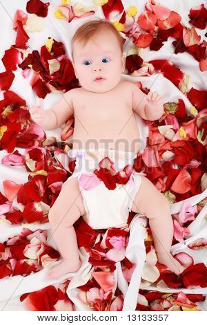 Beautiful baby in a rose plants. Shot in studio.