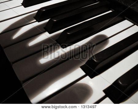 Phantom Musician
