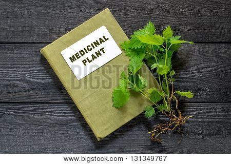 Medicinal plant nettle (Urtica dioica) and herbalist handbook on the old wooden table. It is used in food preparation and production of fabrics