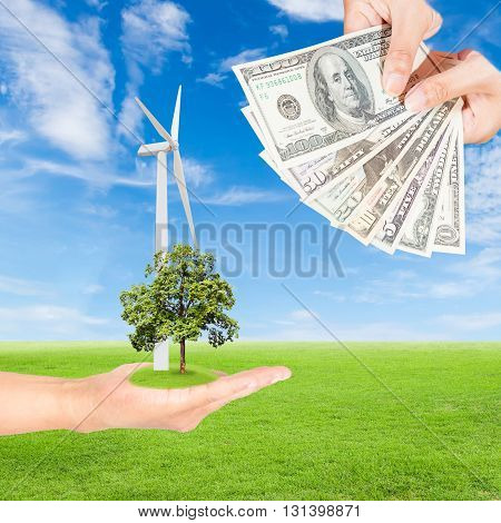 Carbon credits concepthand holding wind turbine with tree and US Dollars banknote against green field and blue sky background
