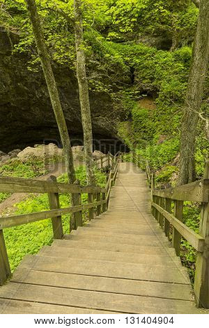 A set of stairs leading to a cave in the woods during spring.