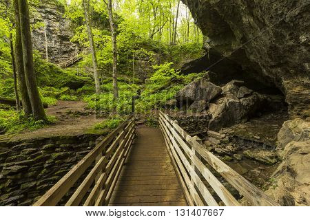 A footbridge leading to a cave in the woods during spring.