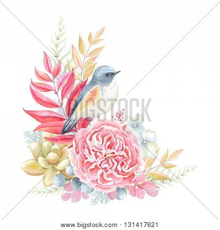 Romantic decoration with bird Blue-tail, English rose, succulent plant and leaves. Vector illustration in vintage style.
