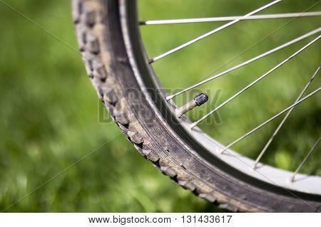 Valve of a mountain bike bicycle wheel