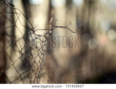Concept of migration in Europe - wire fence