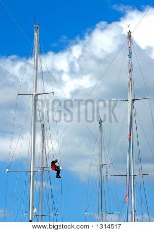Boat Master