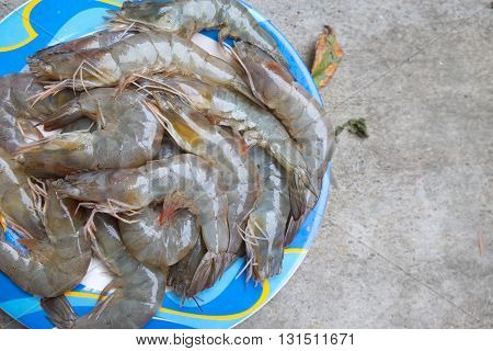 Raw shrimp prepare for cook on stone background