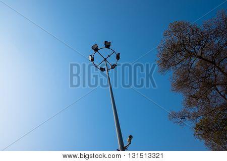 light pole with big tree on blue sky
