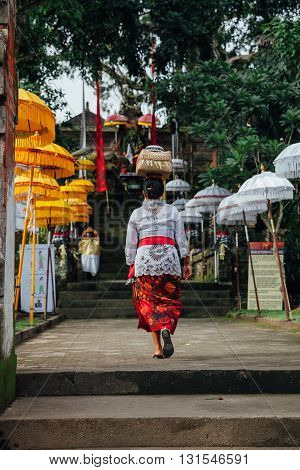UBUD INDONESIA - MARCH 02: Balinese woman in traditional clothes carrying ceremonial box with offerings on her head during Balinese New Year or Nyepi Day celebrations on March 03 2016 in Ubud Bali.