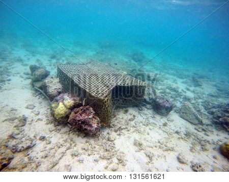 Rare underwater shot of traditional handmade trap - fish pot for lobster catching on coral reef near Mauritius Island. Fishing and tourism movement are main sources earnings for natives.
