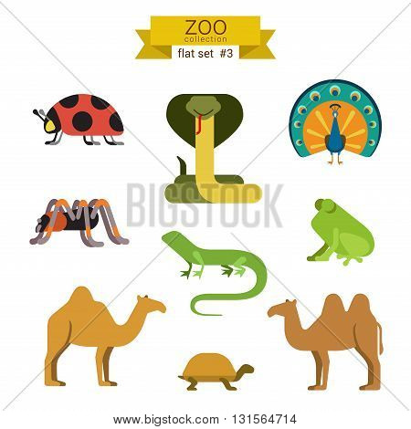 Flat design vector animals icon set camel snake
