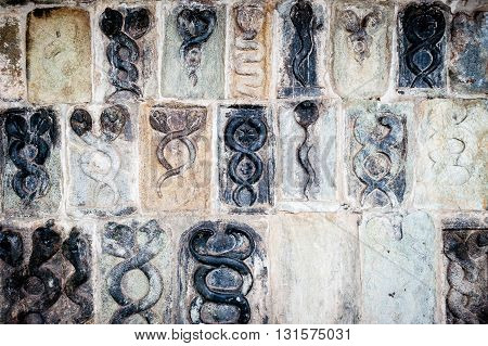 Wall full of carved snakes in honor of shiva, Belur, Karnataka, India