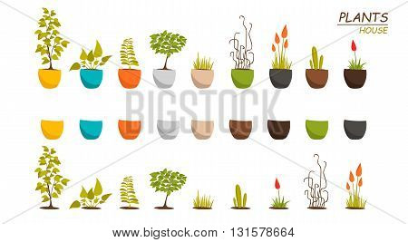 House plants vector objects. Plants and flowers. Flowers and house plants in pots. Set of indoors plants. House plants in pots icons.