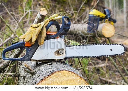 Chainsaw and gloves on tree in forest .