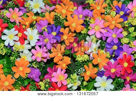 Beautiful colorful flowers background, a lot of flowers