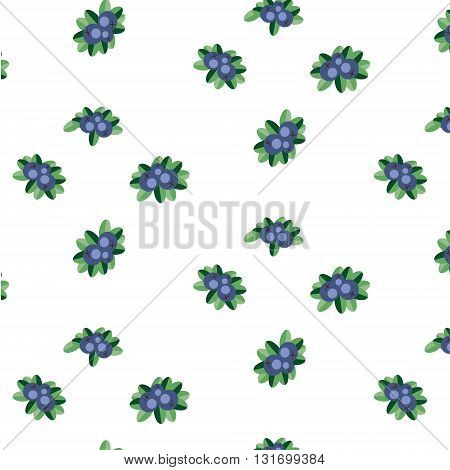 Blueberry vector pattern. Blueberries on white background pattern