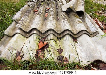 Illegal asbestos dumping - Roofing asbestos panels illegally abandoned in nature poster