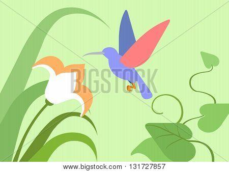 Hummingbird flower habitat flat cartoon vector wild animal bird