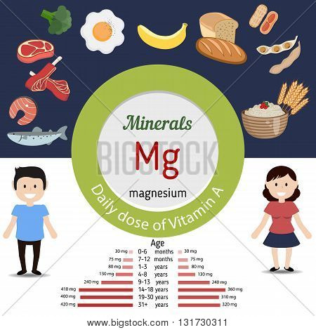 Minerals Mg and vector set of minerals Mg rich foods. Healthy lifestyle and diet concept. Magnesium. Daily doze of minerals Mg.