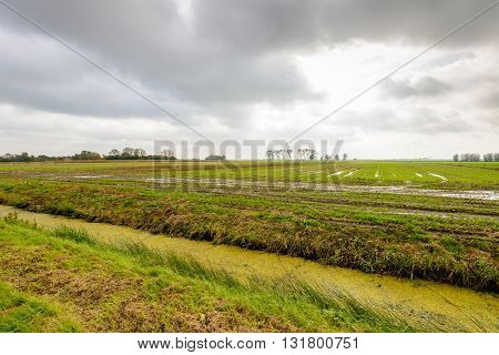 Menacing cloudy sky above wet agricultural fields with puddles of water. It's really autumn now. In the foreground a diagonal ditch covered with duckweed.