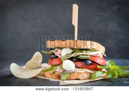 Photos of juicy toast sandwich on rustic background