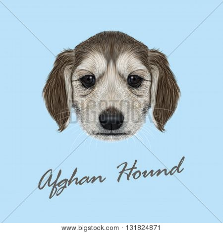 Vector Illustrated Portrait of Afghan Hound puppy. Cute dark coat face of domestic dog on blue background.