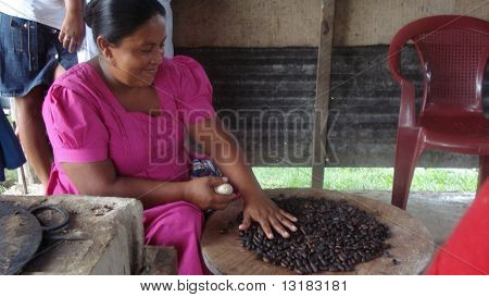 Cacao Beans for Making Cocoa!