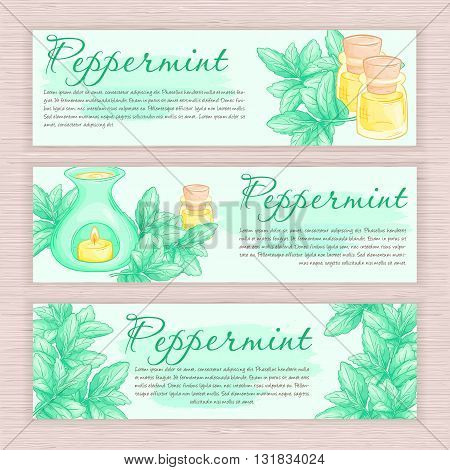 vector hand drawn banner with peppermint and oil burner.