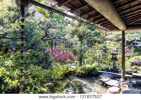 Kanazawa, Japan - April 24, 2014: The small japanese garden of Nomura samurai family residence in Kanazawa Nagamachi district. The Nomura were a high ranked samurai family in japan's feudal era.