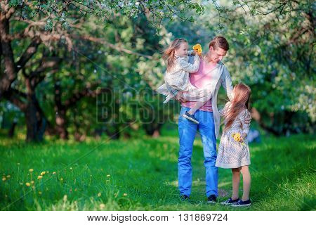 Adorable little girls and father in blooming cherry garden on beautiful spring day