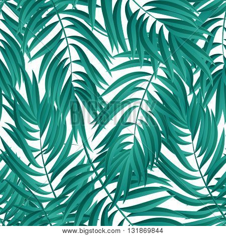 Tropical Palm leaves. Tropic palm. Tropical Palm leaf. Green tropic palm. Blue palm summer tropical leaves. Tropic leaves frame. Green summer tropic palm leaves. Square design tropic palm