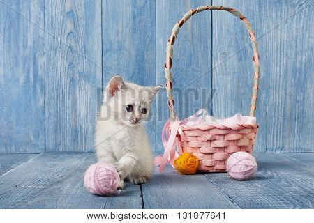 White kitten with pink wool ball and straw basket. Playful white kitten. Sweet adorable kitten on a serenity blue wood background. Small cat. Funny kitten with copyspace