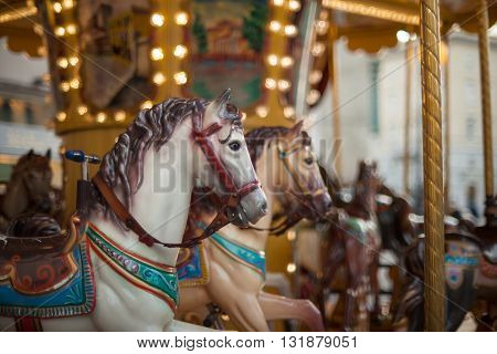 Horse head in the traditional fairground vintage carousel Trieste