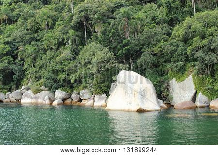 Rainforest and sea, Balneário Camboriú, Santa Catarina, Brasil