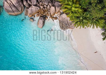 Tropical beach with sea and palm taken from drone. Beach drone photo. Beach and sea photo. Beach and palms. White sand beach. Romantic beach aerial shot.