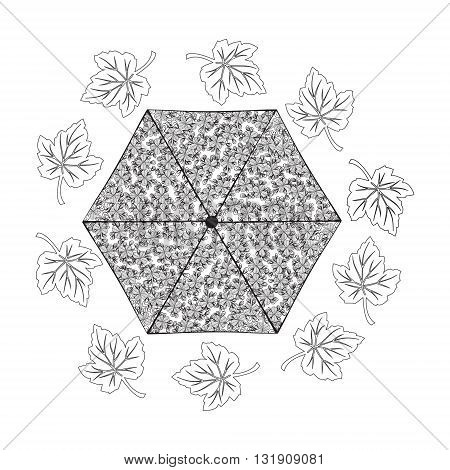 Hand draw vector Autumn theme doodle coloring page for adult. An Umbrella and Leaves in zentangle style.