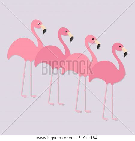 Four pink flamingo set. Exotic tropical bird. Zoo animal collection. Cute cartoon character. Decoration element. Flat design. Light purple background. Isolated. Vector illustration