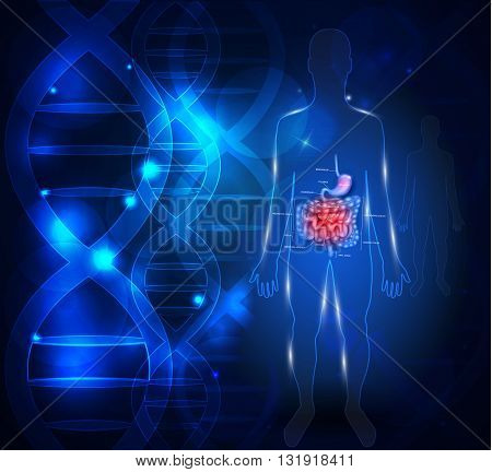 Gastrointestinal Tract Abstract Scientific Background