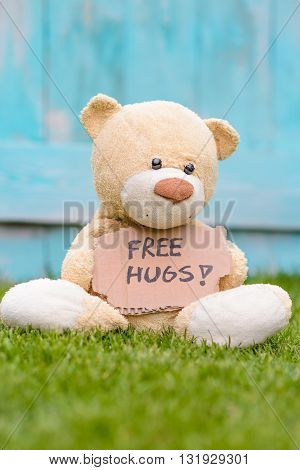 Teddy Bear Holding Cardboard With Information Free Hugs
