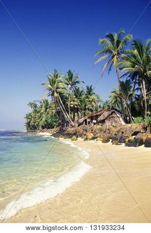 a beach at the coast of Hikaduwa at the westcoast of Sri Lanka in Asien.