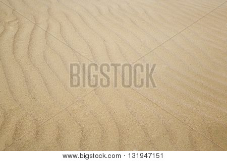 Close-up photo of the sand dunes in arid area