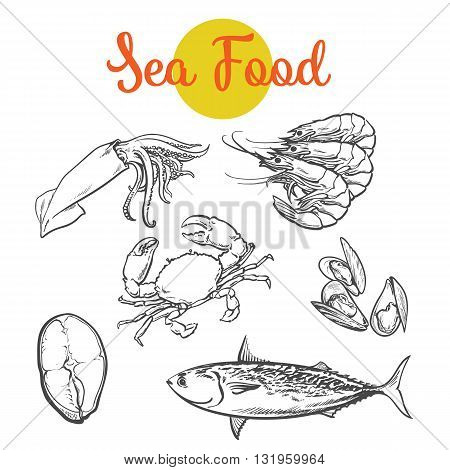 Set of marine products from the sea food, set sketch hand-drawn elements, sea fish, crab, shrimp, fish steak, Colmar, mussels isolated on white background food color selection of fresh sea food