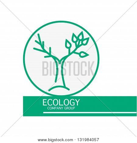 Vector ecology company group logo isolated on white background. Flat simple green insignia. Plant logo for ecology company, cosmetology, beauty shop, beauty salon, spa, banner, flyer, illustration.