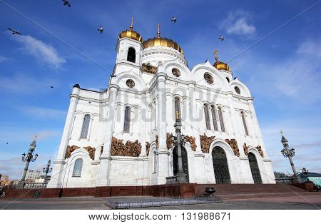 Doves in the sky over the Cathedral of Christ the Savior in Moscow
