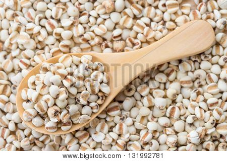 Millet rice on the wooden spoon of millet background