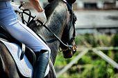 Horse theme: jockeys, horse races, speed. poster