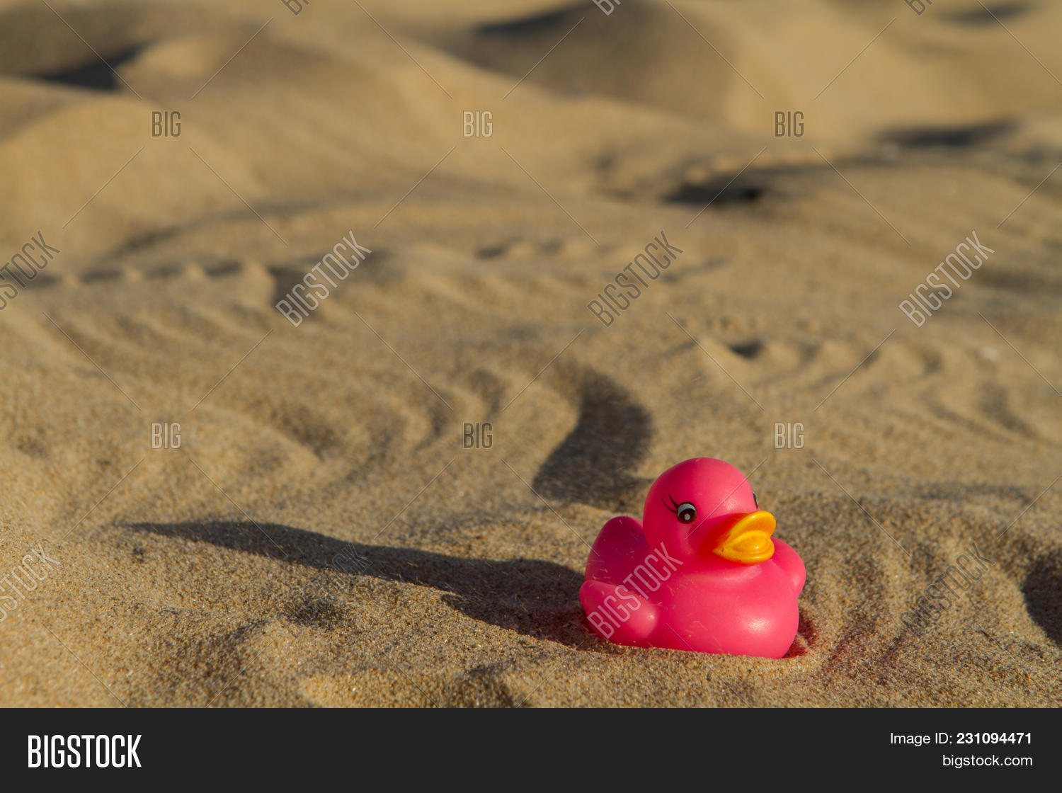 Pink Rubber Toy Duck Image & Photo (Free Trial) | Bigstock